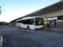 Link SA - Scania Bus on 800 (RS 1990) Tags: linksa bus teatreeplaza modbury interchange ttp teatreegully adelaide southaustralia friday 20th july 2018 route800 zoneh scania