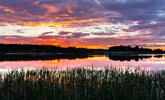 Lake Pitkäjärvi (Antti Tassberg) Tags: kesä landscape pitkäjärvi pilvi laaksolahti auringonlasku hdr reflection espoo järvi taivas aurinko cloud lake sky sun sundown sunset