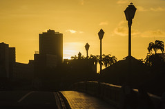 POLES SILHOUETTES / SILHUETAS DE POSTES (Arthur Perruci) Tags: arthurperruci nikond5000 nikon d5000 recife pernambuco recifepe nordeste brasil ponte pordosol sunset nikon70300mmafs