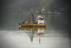 No Fishing Today (Jocey K) Tags: newzealand nikond750 bankspeninsula akaroa sea water akaroaharbour boats reflections sky clouds mist