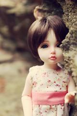 Lena (mijalien) Tags: iplehouse doll bid normal skin custom own faceup dolls love girl elin baby child bjd ball joined little lovely