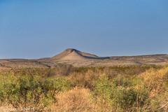 Terlingua Ranch desert flats during golden hour