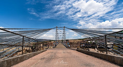 Walking over the Gorge (Wits End Photography) Tags: bridge travel water colorado sky river architecture royalgorge bluesky blue clear cloudless infrastructure landscape nature outdoor sunny tourism tourist traveling watercourse waterway structure