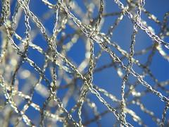 internet (Gazman_AU) Tags: net woven macro sky blue bokeh knit