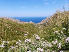 Mallorca '15 - Tramontana 04.Jpg (Stappi70) Tags: gebirge mallorca meer mittelmeer natur spanien tramontana urlaub
