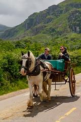Jaunting Car - Killarney, Ireland - Summer 2018 005.jpg (jbernstein899) Tags: mountains gapofdunloe emeraldisle killarney green ireland jauntingcar