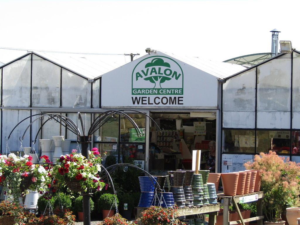 Welcome To Avalon Garden Centre Wallygrom Tags England Surrey Hindhead Tilford Churt Tilfordroad