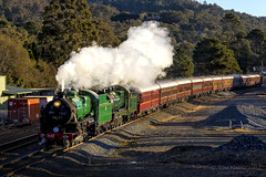 Chasing Shadows (Tom Marschall) Tags: mittagong newsouthwales australia au 35 3526 36 3642 nanna nanny pig steam locomotive kettle