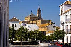 20101113 Sevilla (8) Carmona O01 (Nikobo3) Tags: europe europa españa spain andalucía sevilla carmona arquitectura architecture travel viajes panasonic panasonictz7 tz7 nikobo joségarcíacobo paisajeurbano