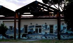 Che cerca, trota (Colombaie) Tags: prenestino pigneto tramonto domenica passeggiata malumore riprendersi io marco parcodelleenergie exsnia viscosa roma streetart murales arte contemporanea