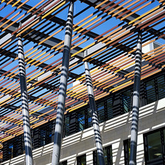 Roof slats (Tpstearns) Tags: film e6 provira fuji 120 hasselblad 150mmf4 500cm square 6x6 architecture building