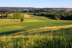 Suwalski Park Krajobrazowy / Suwałki Landscape Park (PolandMFA) Tags: suwalszczyzna suwałki krajobraz landscape suwalskiparkkrajobrazowy suwałkilandscapepark