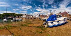 DSC_9964-Pano: Stonehaven, Scotland (Colin McIntosh) Tags: scotland stonehaven coastalpath