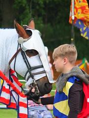 DSCF3724 (SierPinskiA) Tags: ruffordabbeycountrypark rufford knightsofnottingham fujixs1 jousting medieval horse knights goldeneagle falcon