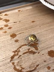 IMG_4854 (burde73) Tags: krugxfish krugid krug krugchampagne portofino liguria rapallo krugexperience olivierkrug champagne italy france mare vin tasting domenicosoranno langosteria paraggi