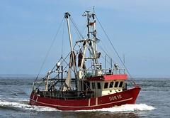 DOR 10 Wangerland (Bernhard Fuchs) Tags: boat nikon water schiffe ship ships vessel cutter fishing cuxhaven elbe fischkutter fischereischiff fishingboat boot wasser schiff