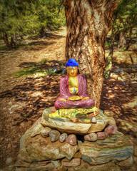 The Buddha of Sangre de Cristo (danielgweidner) Tags: buddha colorado hdr landscape mountains photomatix topaz photoart photoshopcs6 nikviveza nikcolorefx buddhist monastery sangredecristorange art canon painting