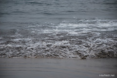 Playa de las Américas, Тенеріфе, Канарські острови  InterNetri  799