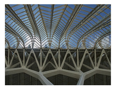 Lush concrete (Museo de las Ciencias Príncipe Felipe (2)) (AurelioZen) Tags: europe spain valencia ciudaddelasartesylasciencias santiagocalatrava museodelascienciaspríncipefelipe lushconcrete reinforcedconcrete superwideangle