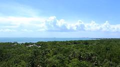 florida (kaceyfoss) Tags: horizon florida summer travel vacation sunny clouds sky trees water
