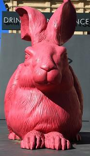 Pink Hare Vienna State Opera House -Austria -070518 (2)