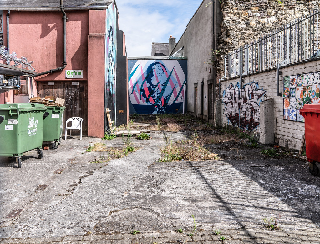 EXAMPLES OF STREET ART [URBAN CULTURE IN WATERFORD CITY]-142297