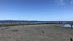 Low tide, Golden Gardens Beach (iagoarchangel) Tags: goldengardens beach tide pugetsound washington lowtide