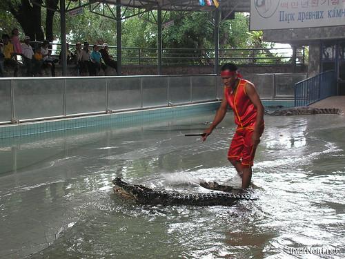 В пащу крокодилу Паттайя Таїланд Thailand InterNetri 31