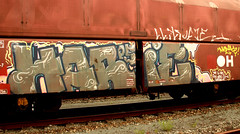 graffiti on freights (wojofoto) Tags: amsterdam nederland netherland holland cargotrain freighttraingraffiti freighttrain fr8 vrachttrein graffiti streetart wojofoto wolfgangjosten