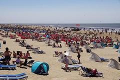 DSC02542 (ZANDVOORTfoto.nl) Tags: zandvoort aan zee strand stranddag 1 2018 weer zon sun sea coast