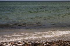 Dänemark, Fünen (dorothea knie) Tags: dänemark fünen meer sea steine stones welle wave tang wead