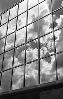 Organized Reflections
