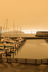 Yellow by the Bay (Jedifro) Tags: san francisco bay california ocean water fuji wide 1024mm xt1 yellow landscape