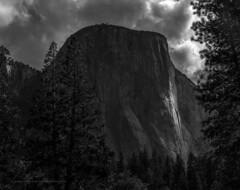 Large Format 4x5 (adventurcrazy) Tags: tribute elcapitan yosemitenationalpark yosemite anseladam nationalhistoriclandmrk nationalpark nature california rock tourist turistatractions