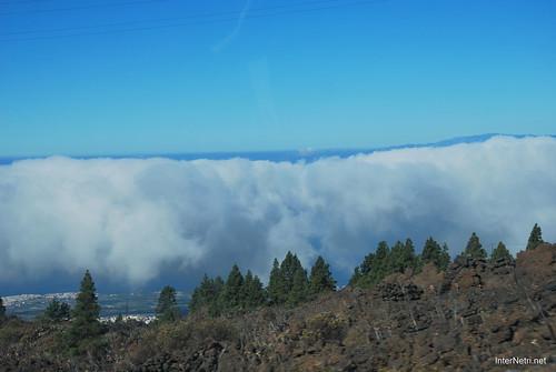 Понад хмарами, Тенеріфе, Канарські острови  InterNetri  005