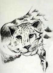 Gaze (Debmalya Mukherjee) Tags: charcoal drawing paper sketch pencil