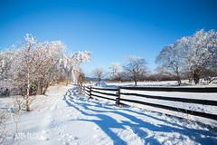 Winter landscape in Poland (aniadudek) Tags: winter poland karpacz