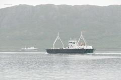 """""""Fykan"""" og """"Skutvik"""" (OlafHorsevik) Tags: fykan torghattennord thn crute fv17 rv17 kystriksveien jektvik kilboghamn ferge ferga ferry ferja ferje"""