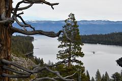 DEH_2604 (sobca) Tags: alpine california laketahoe laketahoebasinnationalforestlands nevada sierramountains emeraldbay