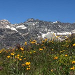 Aosta A005. thumbnail