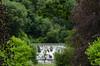 Arboretum Cascade (Stephen Reed) Tags: garden trees summer water waterfalls nikon d7000 lightroomcc