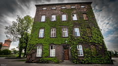 GREEN HOUSE (tomaszpluta1) Tags: building sky tree window sony alfa sigma 1020 green house urgii turgii do