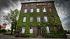 GREEN HOUSE (tomaszpluta1) Tags: building sky tree window sony alfa sigma 1020 green house