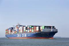 CMA CGM LA TRAVIATA (angelo vlassenrood) Tags: ship vessel nederland netherlands photo shoot shot photoshot picture westerschelde boot schip canon angelo walsoorden cargo container cmacgmlatraviata