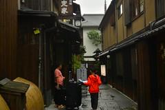 DSC_0052 (sxcxxhx) Tags: japan osaka kyoto hydrangea flower trip voyage 日本 大阪 京都 旅行