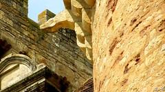 Gargouille du château (sergeb.) Tags: gargouille tour pierre chateau architecture