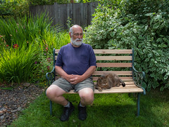 Contemplation On Our Refurbed Bench (marvhimmel) Tags: general chaucerthecat personal wildflowers backyard bench