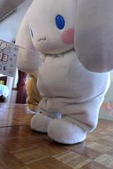 53AL5488 (OHTAKE Tomohiro) Tags: sanrio外部イベント minato tokyo japan jpn