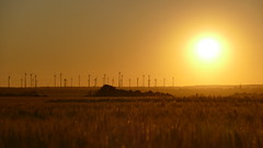 Power (Don Bello Photography) Tags: sommer 2018 mecklenburgvorpommern windrad sonne sonnenuntergang kornfeld abendlicht abendstimmung abendhimmel abendsonne himmelsbilder himmel himmelsgold energie acdsee panasonicfz150 lumixfz1000 reinhardbellmann donbellophotography sky