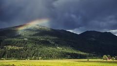 2018-07-03 184/365 Slice of Rainbow.... (Explored) (Rick McCutcheon) Tags: 365the2018edition 3652018 day184365 03jul18 olympusomdem5 olympus17mm